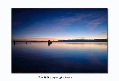 - Tom Walker Photography