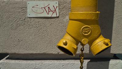 Leica X-1 Elmarit 24mm f2.8 lens. Hollywood California, September 2010