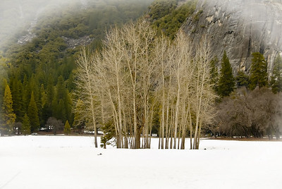 Yosemite Valley In Winter 2007