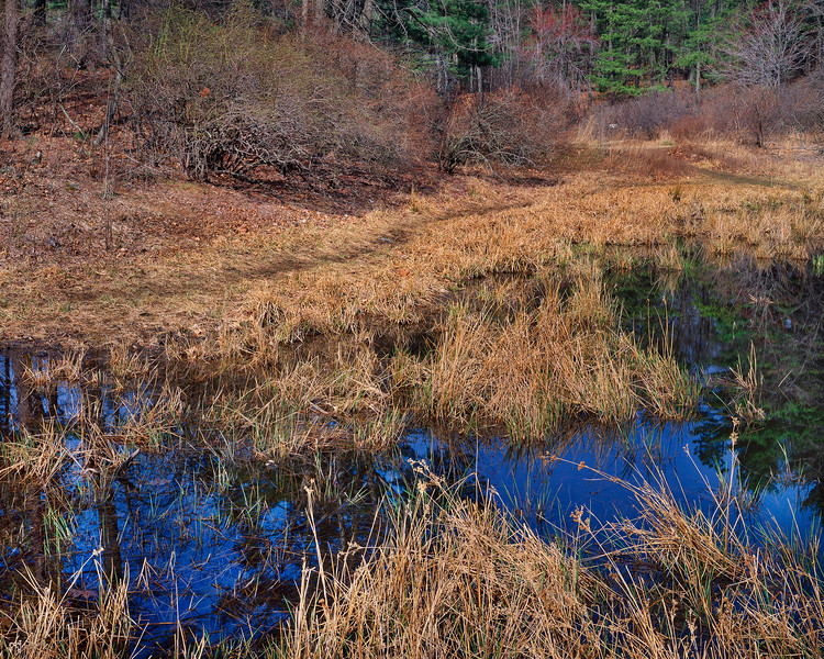 Path At Wyman's Meadow