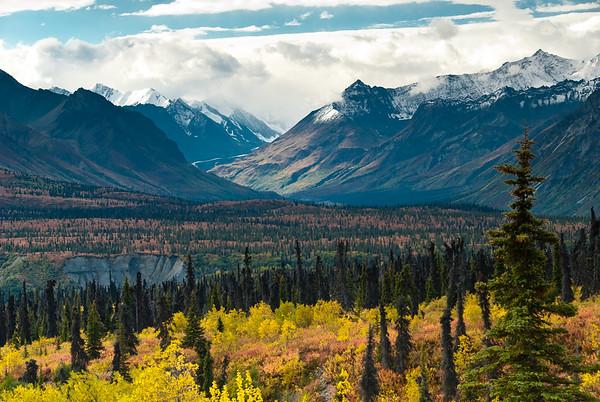 Fall Scene from the Glenn Highway
