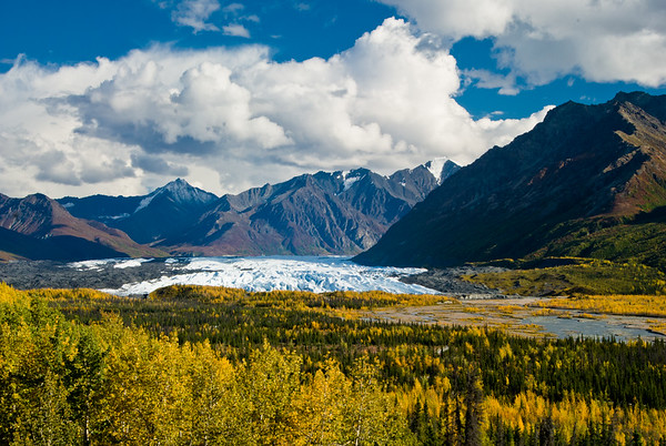 Terminus of the Matanuska Glacier.  To gain perspecive of these views, the toe of the Glacier is the height of a 10 story building!