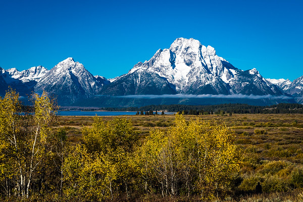 Mt. Moran and fall colors... Grand Teton National Park