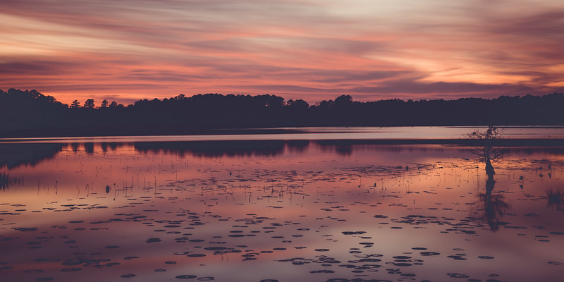 Stunning sunset over Bluff Lake in the Sam D. Hamilton Noxubee National Wildlife Refuge, MS