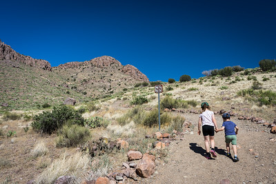 hiking in Rock Hound state park, Deming, NM
