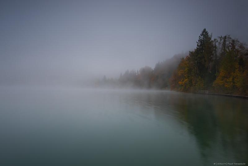 2016.79 - Slovenia VI - LakeBledMistTrees