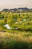 Cross Creek Ranch - Jonnu Singleton-2297.jpg