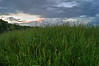 CLOUDS OVER THE FIELD<br /> IMAGE 1A
