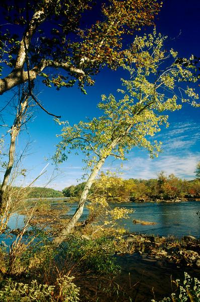 POTOMAC RIVER, IN GREAT FALLS PARK, GREAT FALLS VA