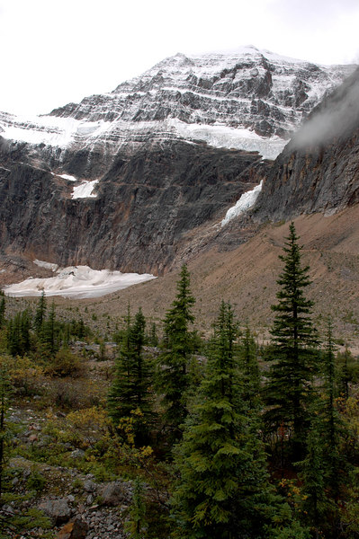 Cavell Meadow & Mt. Edith Cavell<br /> Jasper National Park
