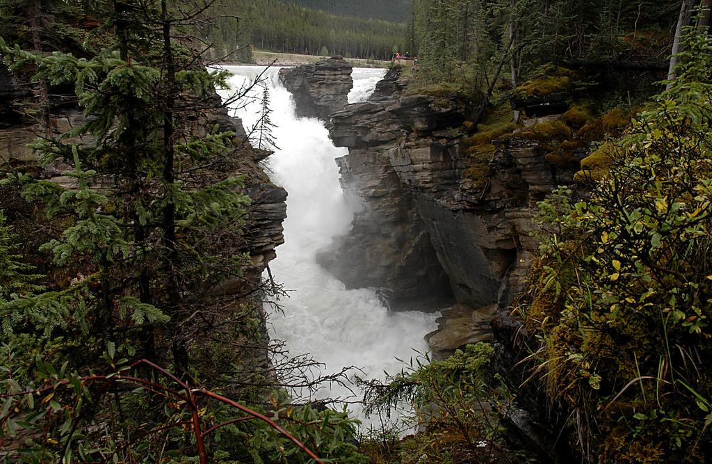 Athabasca Falls<br /> Jasper National Park