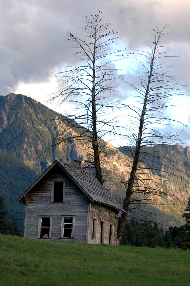 abandoned home in pasture off I-95, north of Radium Hot Springs, Canada 9-5-04