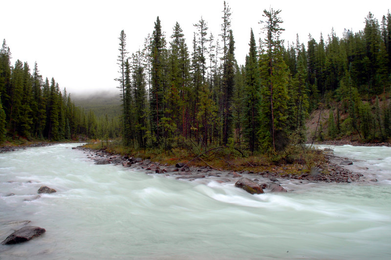 island above Sunwapta Falls<br /> Jasper National Park