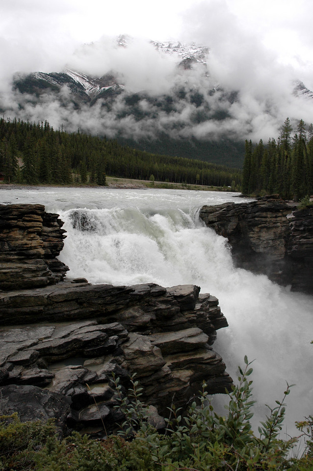 Athabasca Falls descending from Columbia Glacier on Mt. Kerkeslin<br /> Jasper National Park