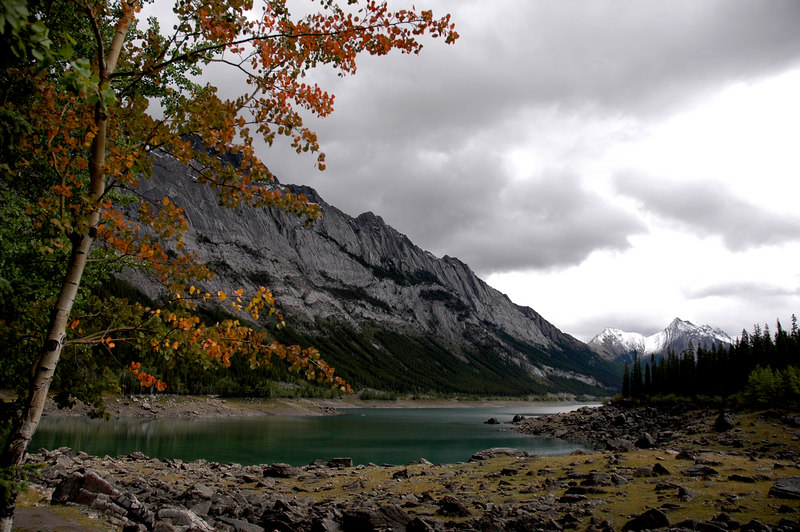 Medicine Lake<br /> Jasper National Park