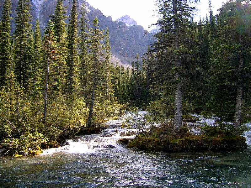 islands in the stream<br /> Valley of the Ten Peaks, Banff