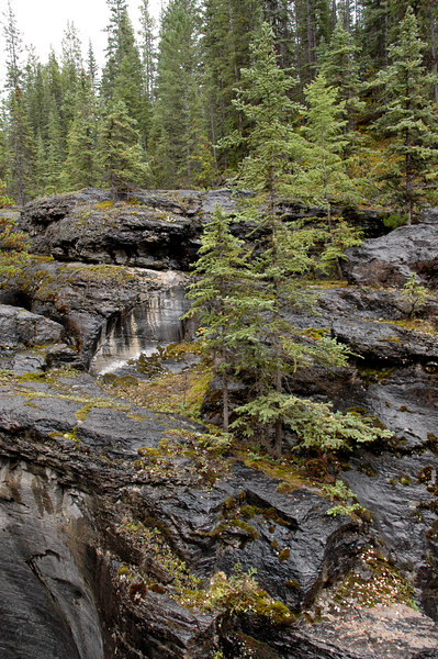 Maligne Canyon<br /> Jasper National Park