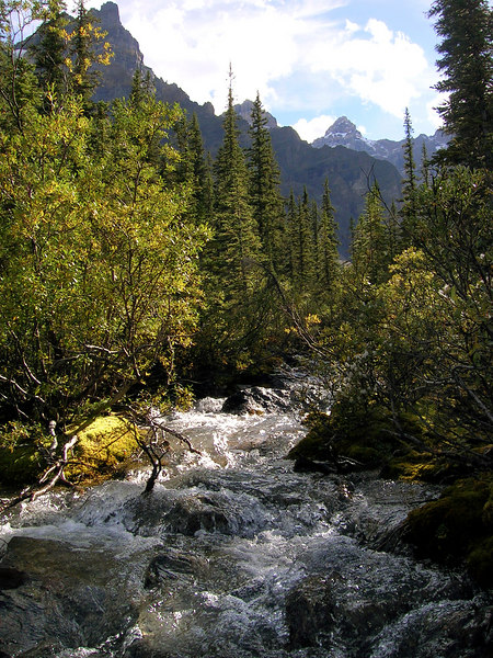 babbling brook entering Moraine Lake from the Valley of the Ten Peaks<br /> Banff National Park