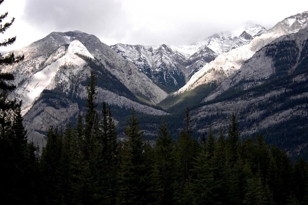 Maligne Lake road<br /> Alberta