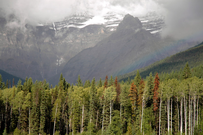 rainbow & Mt. Robson, British Columbia