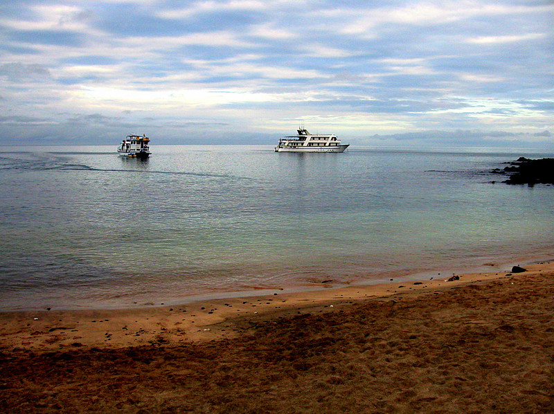 boats in Post Office Bay, early morning, Floreana Island 12-17-2007