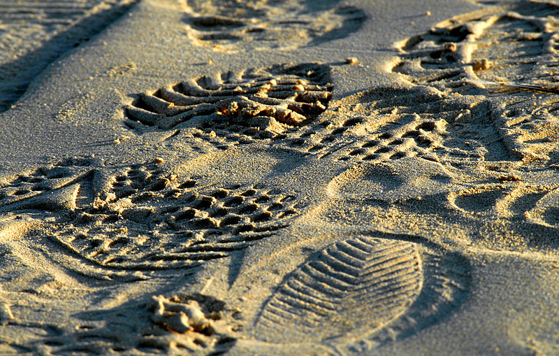 shoeprints in the sand-Punta Cormorant-Floreana Island 12-17-2007