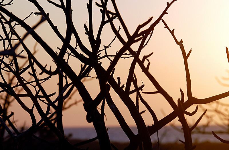 equatorial sunset-N  Seymour Island-Galapagos 12-15-2007