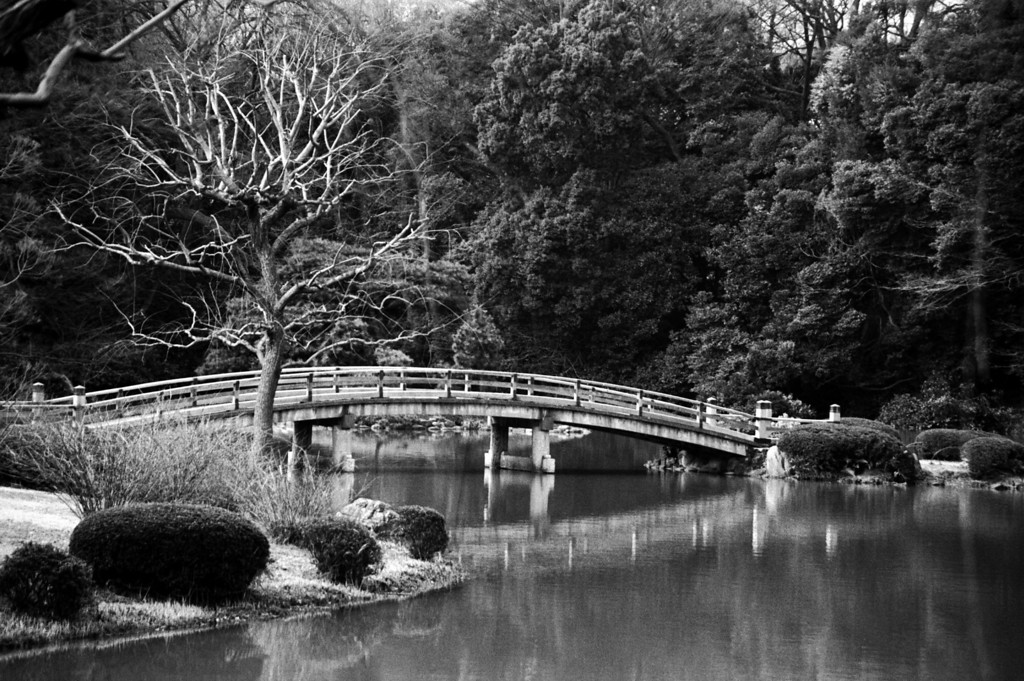 Shinjuku Imperial Gardens bridge - Tokyo 1998 Feb