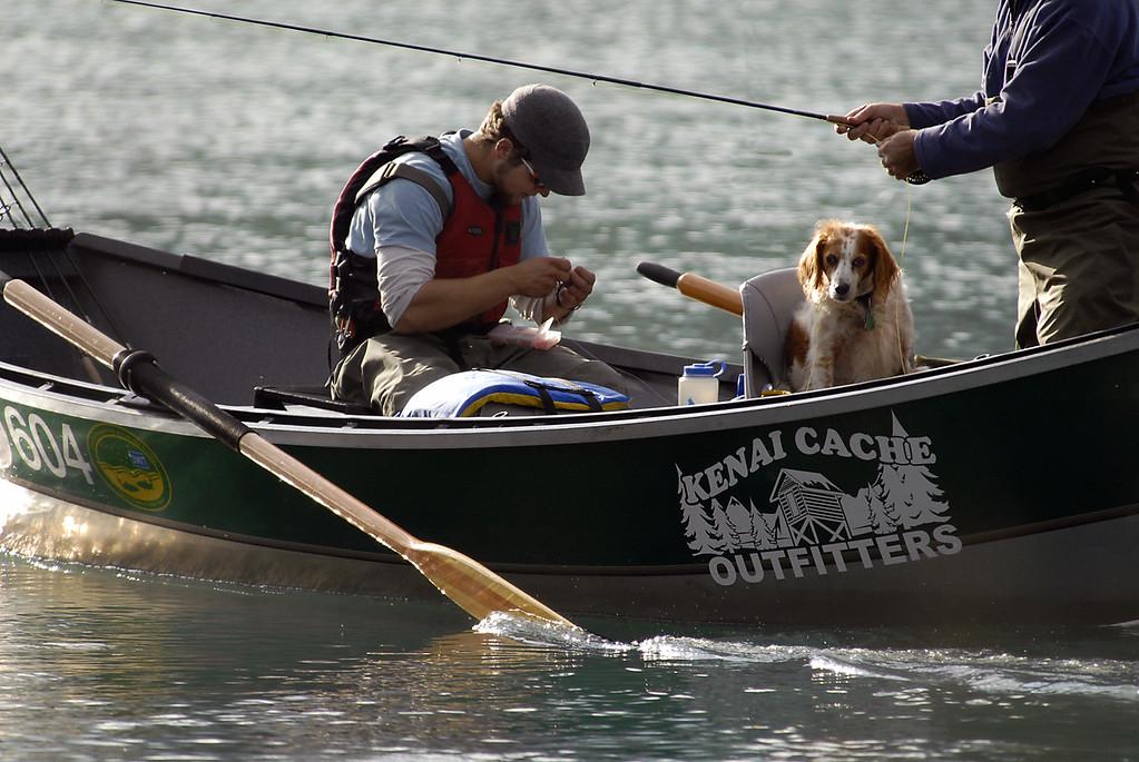man's best fishing friend-Kenai River-Cooper Landing, AK 9-2-2007