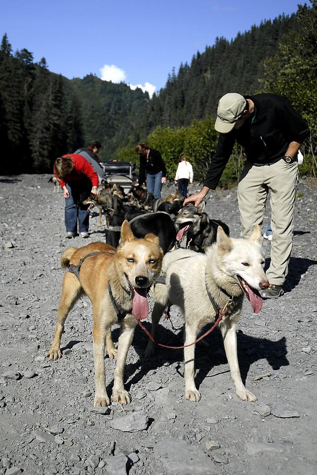 Jerry & Salsa, Rob petting team-Box Canyon-Seward, AK 8-31-2007