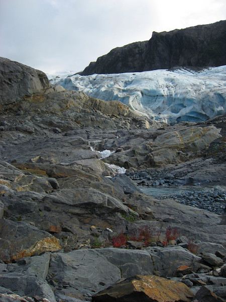 Lawrence Glacier moraine-Passage Canal, AK 8-30-2007