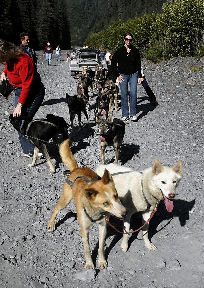 Jerry & Salsa pawsing for photo op-Box Canyon-Seward, AK 8-31-2007