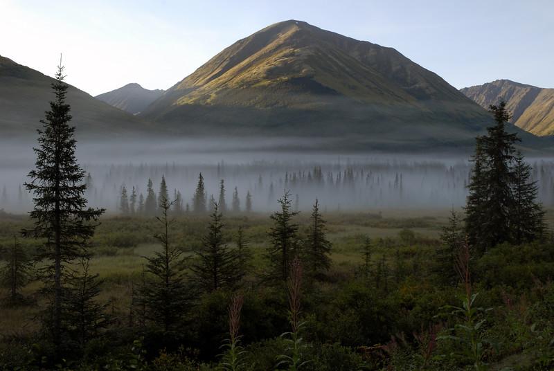 mountain meadow in the mist-Seward Highway-Kenai Peninsula, AK 8-31-2007
