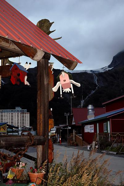 flying bird houses-Whittier, AK 8-30-2007