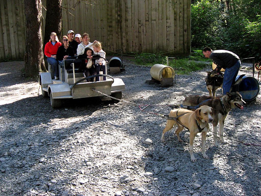 Rob & Kelly waiting in dog cart while team gets harnessed-Seward, Alaska 8-31-2007