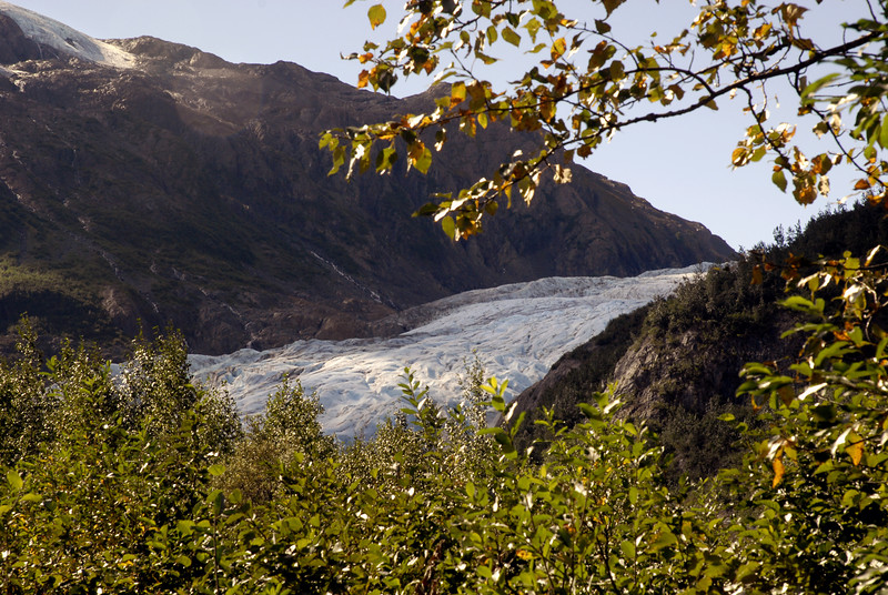 glimpse of Exit Glacier from the woods below-Kenai Fjords NP, AK 8-31-2007