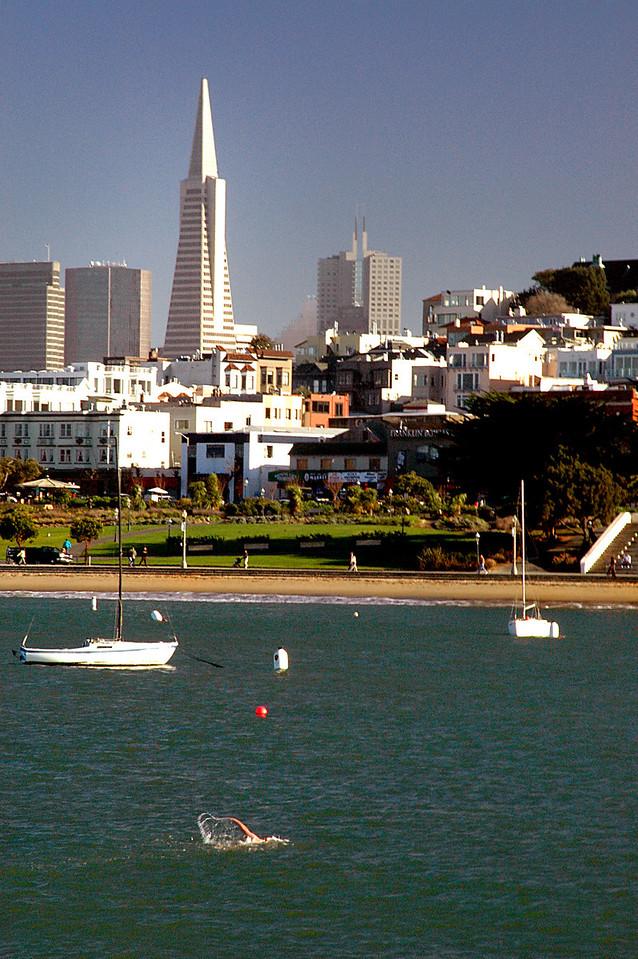swimmer, Transamerica Pyramid-San Francisco, CA 2-14-06