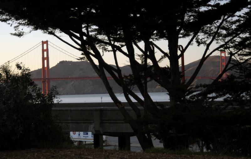 Golden Gate Bridge from the Presidio-San Francisco, CA 1-15-2007