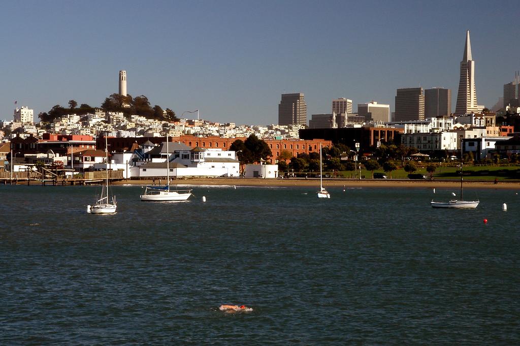 swimmer, Coit Tower, Transamerica Pyramid-San Francisco, CA 2-14-06