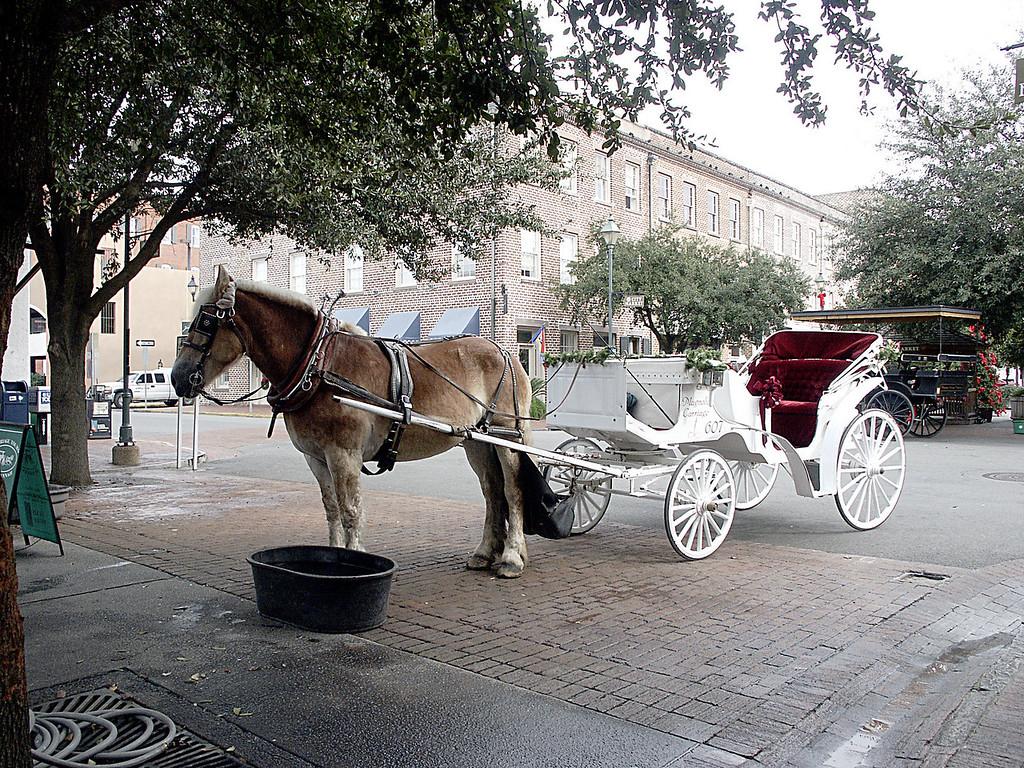 City Market, Savannah 2002