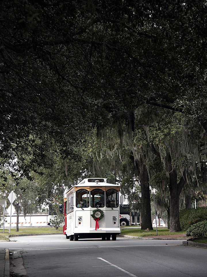 Savannah trolley 2002