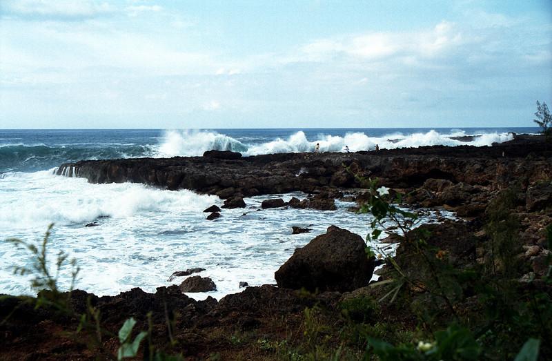 Shark's Cove winter surf 1999 Dec