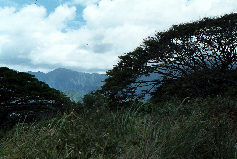 Ko'olau Mntns from Kualoa Ranch-Windward O'ahu 1999 Sept