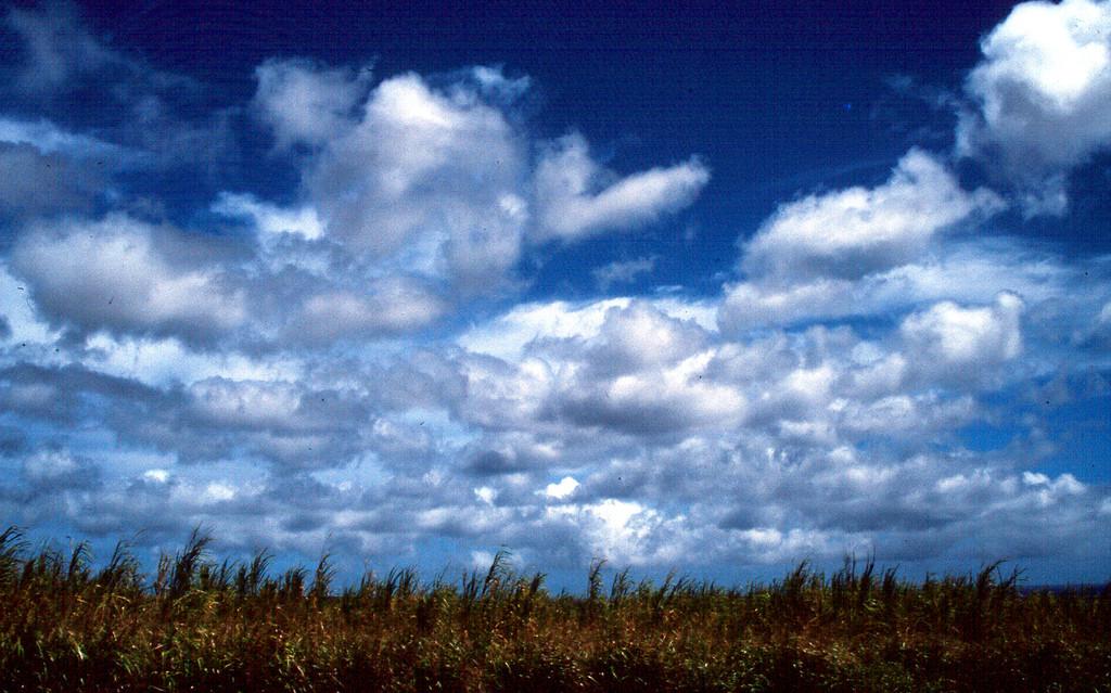 clouds! - Hawaii 2000