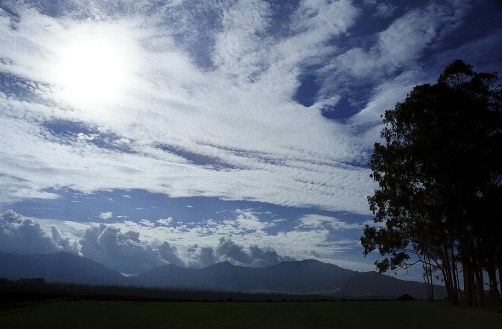 Kukaniloko birthing stones & cool sky - central O'ahu 2000 Feb