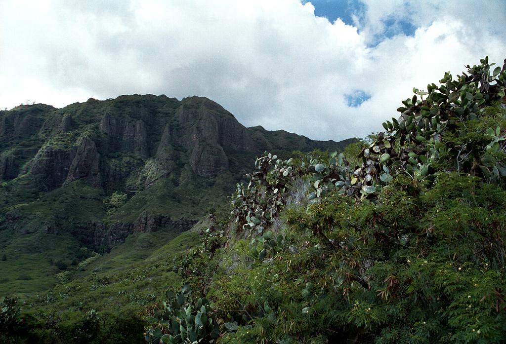 Kolekole Pass-leeward side Waianae Mtns-O'ahu 1999 July