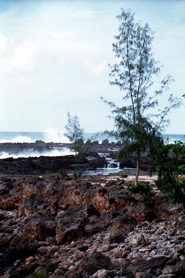 Shark's Cove 'waterfalls' 1999 Dec