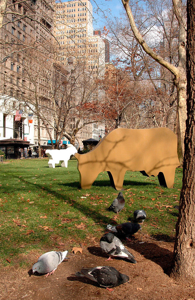 Opie's cow & goat & Manhattan's pigeons in City Hall Park, NYC 11-2004