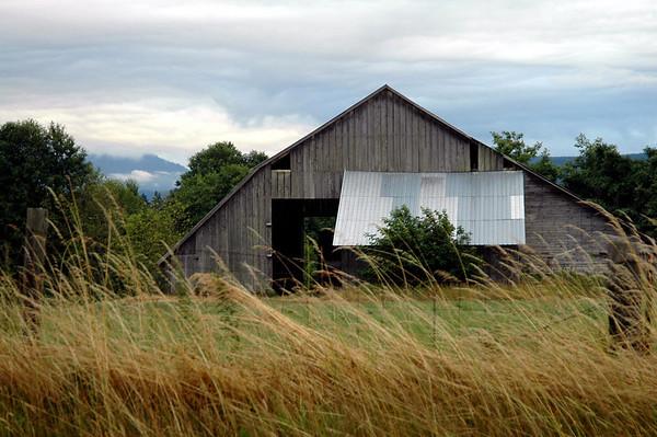 dilapidated barn-Sequim, WA 7-2006