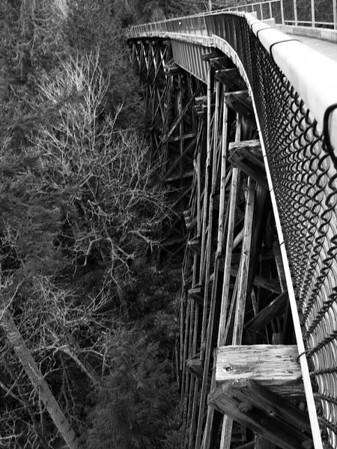 Tokul Creek bridge-Snoqualmie Valley Trail, WA 3-7-2010